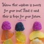 Bible: Proverbs 24:14