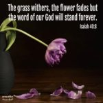 Bible: Isaiah 40:8