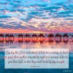 Bible: Exodus 13:21