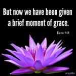 Bible: Ezra 9:8