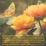 BIble Affirmation: Philippians 4:12-13