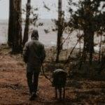 Story: The Old Man and the Dog