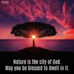 Blessing: City of God