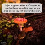 Blessing: Pop-Up