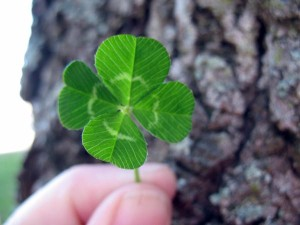 irish blessing clover